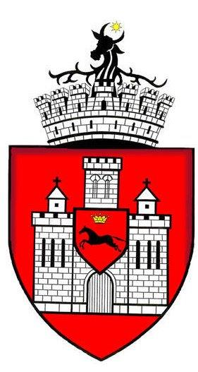 iasi_logo